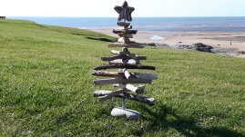 Large Driftwood Tree with Star top